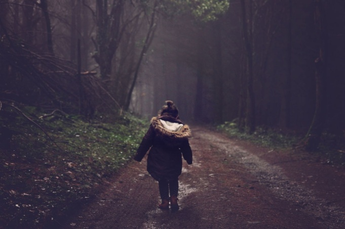 36562-walk in the woods .1200w.tn