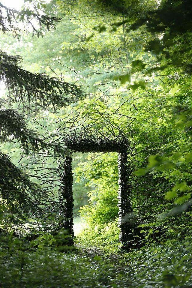 f6ec0669e43423f62067aecb37b9b10a--magic-nature-wild-nature