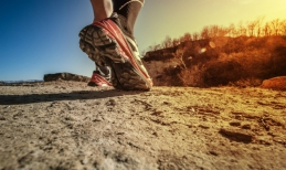 Running is the place where physical activity and good ideas come to grow